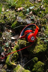 Noontec Zoro Headphones